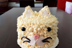 Kitty Cat Torte
